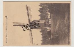 Moerbeke (windmolen Koudenborm) - Moerbeke-Waas