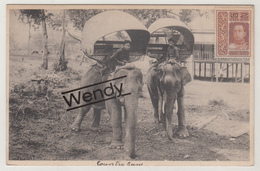 Olifante - éléphants In Siam - Thaïlande