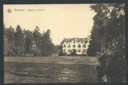 +++ CPA - NASSOGNE - Château De CAUMONT - Nels  // - Nassogne