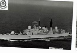 H.M.S Sheffield - Guerre