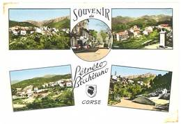 Cpsm Corse - Souvenir De Petreto Bicchisano - Autres Communes