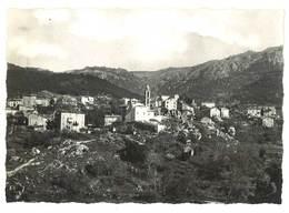 Cpsm Corse - Petreto Bicchisano - Vue Générale Du Village ... - Autres Communes