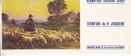 VERMIFUGE CHIARINI / TAENIFUGE DU DOCTEUR JACQUEME / BERGER TROUPEAU MOUTONS - Produits Pharmaceutiques
