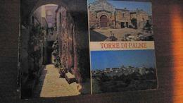 Cartolina:Torre Di Palme Viaggiata (a32) - Non Classificati