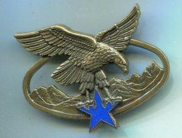 H762 INSIGNE CHASSEUR Brevet Spécialité Troupes De Montagne, Bronze - Armée De Terre