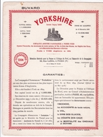 Buvard Yorkshire Compagnie D'assurances 1924 Dimenssion 20,7 Cm X 27 Cm - Blotters