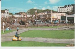 Postcard - Ilfracombe - Card No.pt1279 - Unused Very Good - Postcards