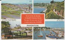 Postcard - Paignton Four Views No Card - Unused Very Good - Postcards