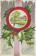 AK Weihnachten / Merry Christmas - Mistelzweige Prägung Color 1910 USA #71 - Weihnachten