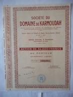 Domaine De KARMOUDAH    ALGERIE Randon Bone - Afrique