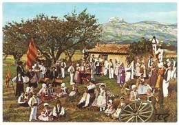Cpsm Aubagne - Li Dansaïre De Garlaban , Groupe Folklorique Provençal - Aubagne