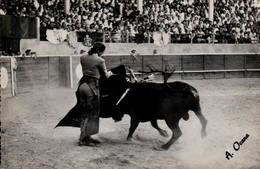 Conchita CINTRON - Ayudado Por Alto - Toros Y Toreros N°3 - Corrida