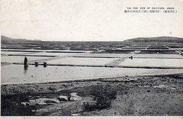 - JINSEN - The Fine View Of Salf-farm - - Corée Du Sud