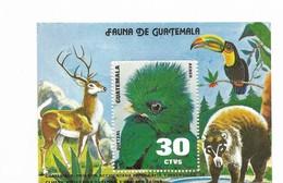 GUATEMALA 1979, FAUNA, ANIMALS, BIRDS, TUCAN, SOUVENIR SHEET MICHEL BL30, SCOTT C674A - Guatemala
