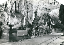 """ POSTOJNSKA   JAMA ""   Postojna    (  Les Grottes  )   YOUGOSLAVIE    ( Angles Coupés)    - CPsm N Et B - - Yougoslavie"