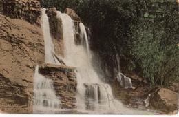 BRIDALVEIL  -  Katoomba Falls  -  (1909) - Australia