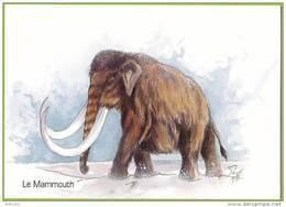 Mammouth Laineux / Woolly Mammoth (Pleistocene). Animal Préhistorique / Prehistoric Animal. Préhistoire. - Elefantes