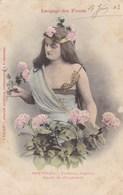 LANGUAGE DES FLEURS - Hortensia - Fleurs