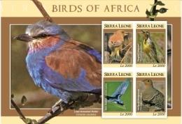 SIERRA LEONE SCOTT # 2965 ; IGPC 0918SH ; MINT N.H ( BIRDS - Sierra Leone (1961-...)