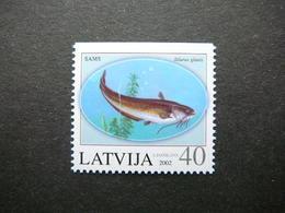 Fishes # Latvia Lettland Lettonie # 2002 MNH # Mi. 575Do - Lettonie