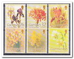 Guernsey 2005, Postfris MNH, Flowers - Guernesey