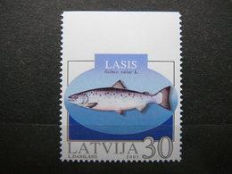 Fishes # Latvia Lettland Lettonie # 2003 MNH # Mi. 595Do - Lettonie