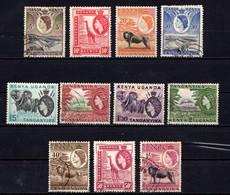 KENYA  UGANDA  &  TANGANYIKA    1954   Various  Designs    Short  Set  Of  11    USED - Kenya, Uganda & Tanganyika