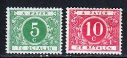 Belgique Taxe 1916 Yvert 12 / 13 (*) TB Neuf Sans Gomme - Taxes