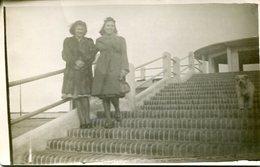 DOS MUJERES Y UN PERRO / TWO WOMEN AND A DOG - POSTAL POST CARD CIRCA 1930 B/N B/W -LILHU - Fotografie