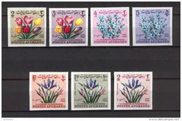 Afghanistan 1963 Teachers Day - Flowers IMPERFORATE MNH (R0444) - Afghanistan