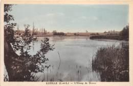 37 - Indre Et Loire / 10034 - Luzillé - L'étang De Brosse - France