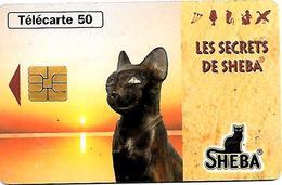 CARTE-n-PUCE-PRIVEE-PUBLIC- 50U-EN1586-SO3-08/96-JD-SHEBA-CHAT LUMIERE-UTILISE-TBE - Francia