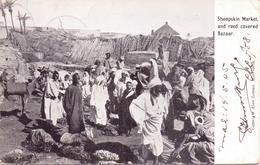 ALTE   AK   MARRAKECH / Marokko  - Sheepskin Market / Schafsfell Markt -  1905 Gelaufen - Marrakesh