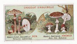 Chromo  AIGUEBELLE   Bons Et Mauvais Champignons    Agaric élevé   Agaric Dartreux - Aiguebelle