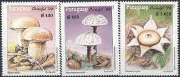 1998 PARAGUAY 2753-55** Champignons - Paraguay