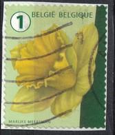 Belgique 2016 Oblitéré Used Flower Fleur Daffodil Jonquille Narcissus SU - Belgique