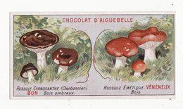 Chromo  AIGUEBELLE   Bons Et Mauvais Champignons    Russule Cyanoxanthe   Russule émétique - Aiguebelle