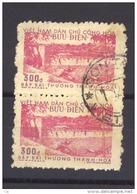 02503  -   Vietnam Du Nord  :  Yv   114  (o)   Paire - Viêt-Nam