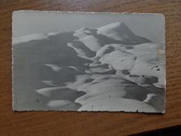 Suisse - Switzerland / Photocarte - Lauberhorn - Kl Scheidegg --> Unwritten - BE Berne