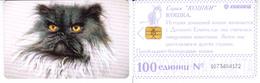 Phonecard   Russia. Kuban  100 Units - Russia