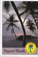 Tropical Florida, The Sunshine State, Used Postcard [22406] - United States