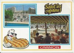 CPM  France    34  Hérault   Salut Les Copains  Carnon  Mauguio - Mauguio