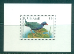 Surinam 1985-95 Birds, American Purple Fowl MS MUH - Surinam