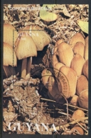 Guyana 1991 Funghi MS CTO - Guyana (1966-...)
