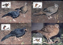 Nicaragua 1994 WWF Highland Quail, Bird Maxicards - Nicaragua