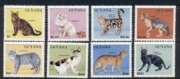 Guyana 1992 Cats MUH - Guyana (1966-...)