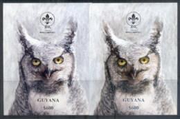 Guyana 1993 Scouting, Bird, Owl Golkd & Silver Opts MS MUH - Guyane (1966-...)