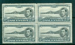 Ascension Is 1938-53 3d Grey Long Beach P13 Blk 4 MLH Lot66129 - Ascension (Ile De L')