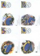 Ascension Is 2007 WWF Resplendent Angelfish 4xFDC Lot77041 - Ascension