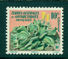 French Antarctic Territory 1959 Flower MLH Lot38663 - French Southern And Antarctic Territories (TAAF)